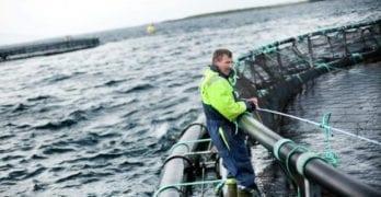 NICCI Ocean Industry seminar in Bergen 15. March 2018
